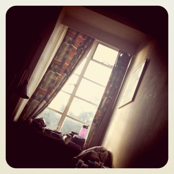 View from my bed: the sun always wakes me before my alarm.