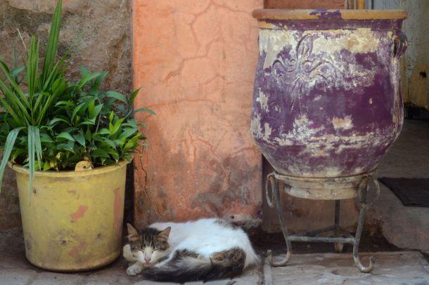 exploring_marrakech_03