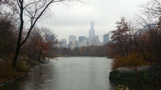 nyc central park view on a rainy day