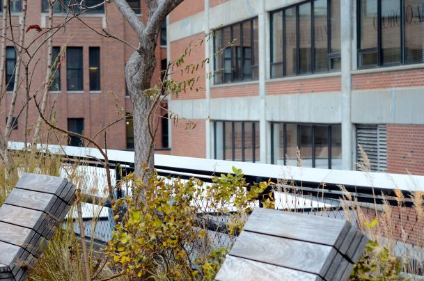 These sun loungers on The High Line would be great in the summer!