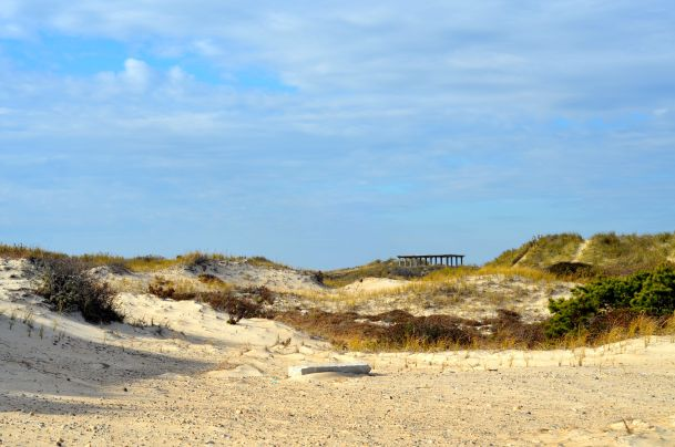 Horseneck Beach - 31