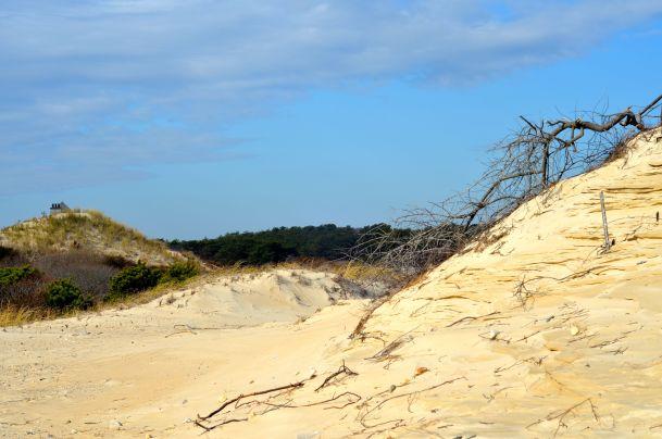 Horseneck Beach - 32