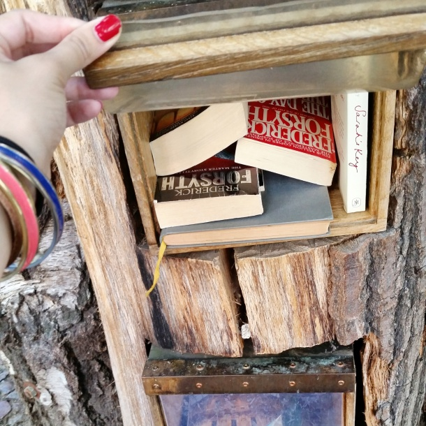 8 Book Exchange near Anna Blume 2