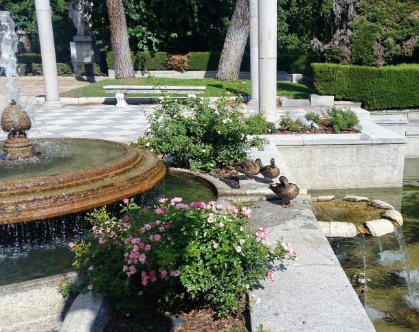 21 Parque del Retiro - Los Jardines de Cecilio Rodríguez