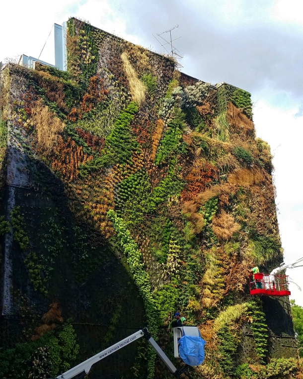 9 Caixaforum vertical garden