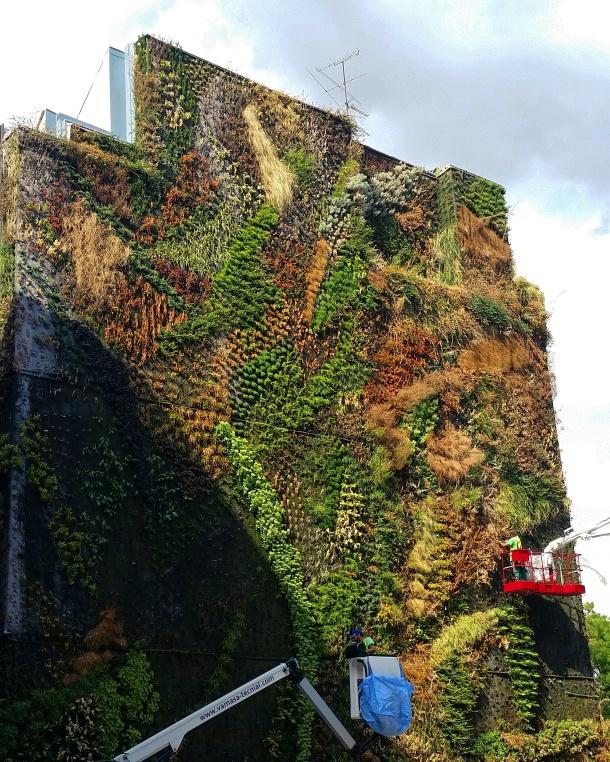 9 Caixaforum vertical garden
