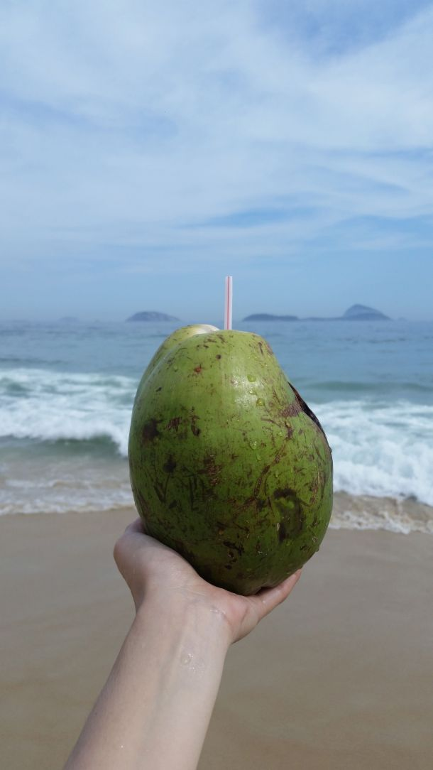 Call Me Katie - beach days at Copacabana, Ipanema and Leblon in Rio de Janeiro filled with fresh coconuts, blue skies and palm trees - 22