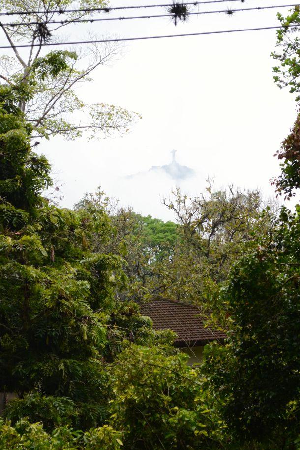 Call Me Katie - Rio de Janeiro Botanical Gardens - 02