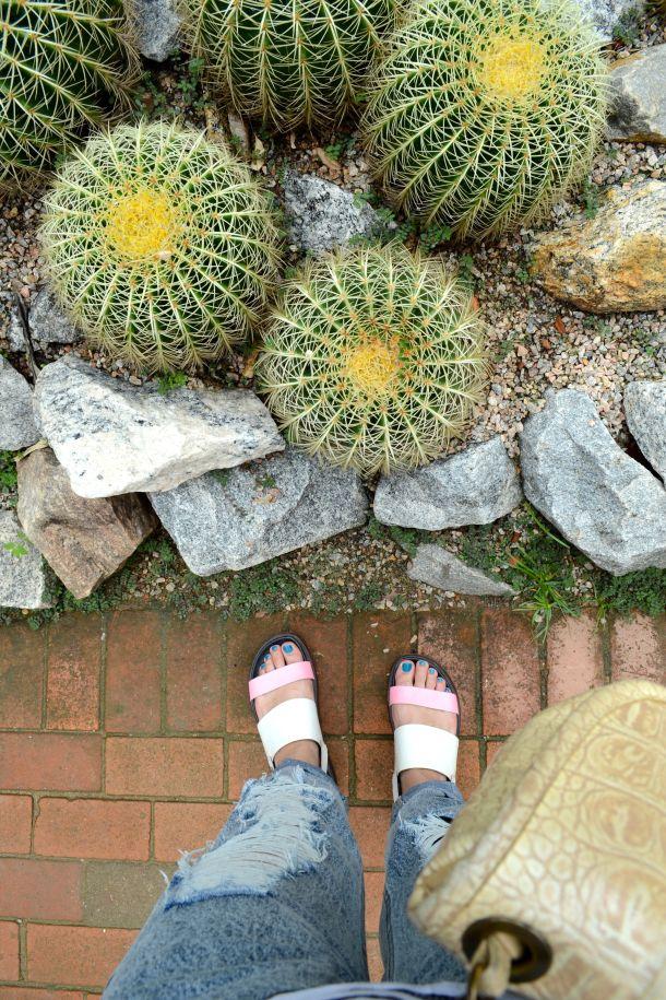 Call Me Katie - Rio de Janeiro Botanical Gardens - 04