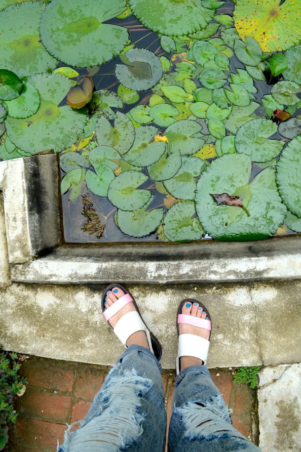 Call Me Katie - Rio de Janeiro Botanical Gardens - 07