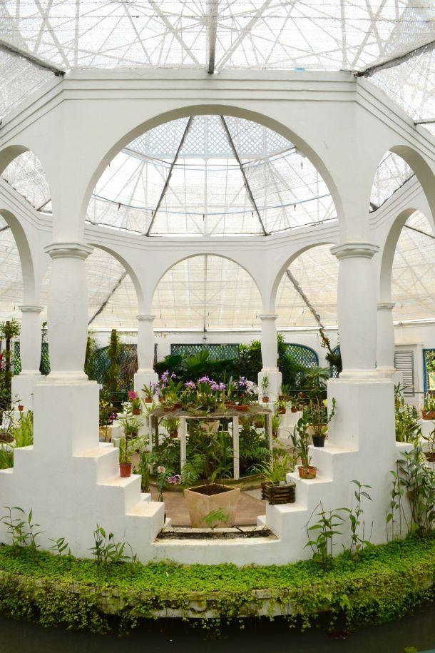 Call Me Katie - Rio de Janeiro Botanical Gardens - 12