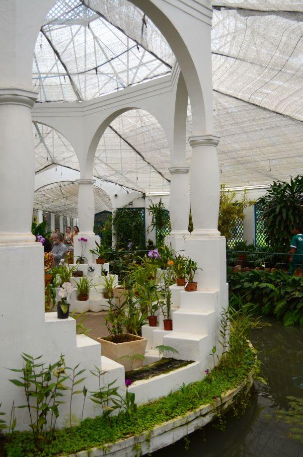 Call Me Katie - Rio de Janeiro Botanical Gardens - 20