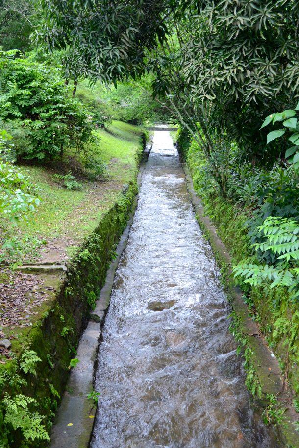 Call Me Katie - Rio de Janeiro Botanical Gardens - 24