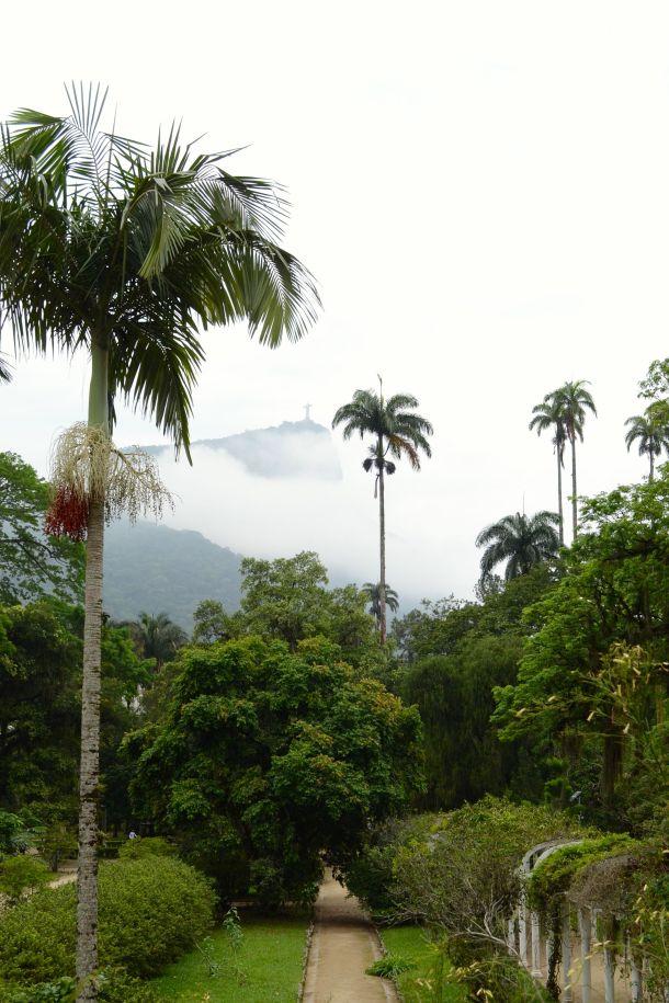 Call Me Katie - Rio de Janeiro Botanical Gardens - 29