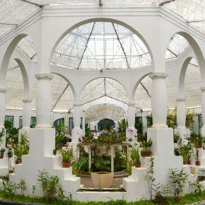 Visiting Rio de Janeiro: BotanicalGardens