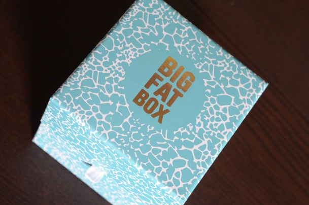 Call Me Katie - Cheerz DIY Photo Album and Big Fat Box - 3 of 19