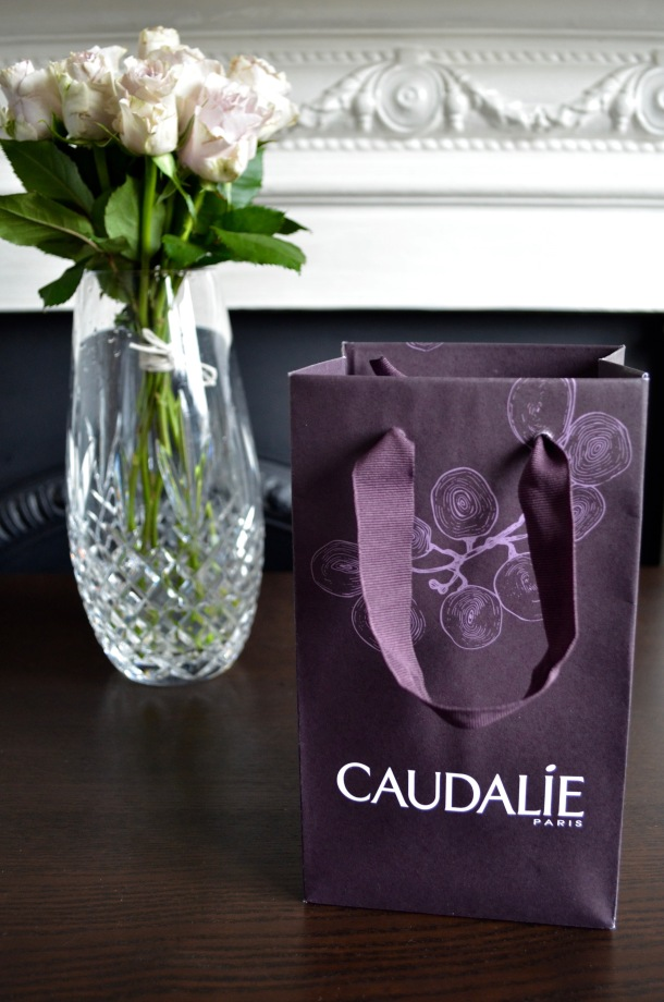 Call Me Katie - Reviewing Caudalie Make-up Removing Cleansing Oil, Rose De Vigne Shower Gel and Glycolic Peel Mask - 1 of 9