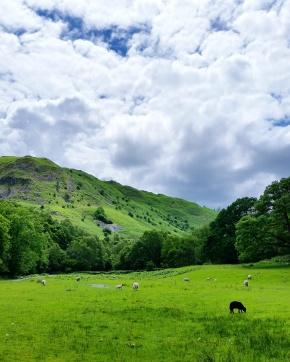 Travel Diary: Lake District Ambleside &Grasmere